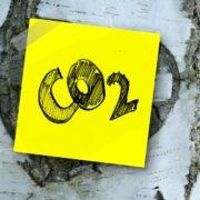 Compenser ou réduire le CO2 : il ne faut pas choisir