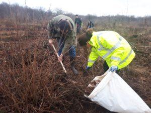 Planter des arbres avec nos clients Sanef